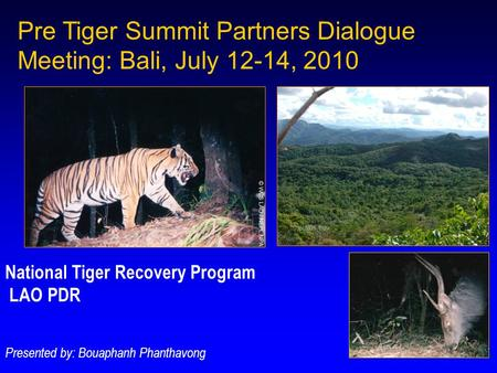Pre Tiger Summit Partners Dialogue Meeting: Bali, July 12-14, 2010 National Tiger Recovery Program LAO PDR Presented by: Bouaphanh Phanthavong.