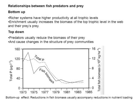 Relationships between fish predators and prey Bottom up Richer systems have higher productivity at all trophic levels Enrichment usually increases the.
