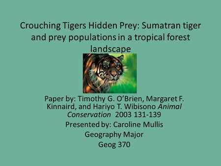 Crouching Tigers Hidden Prey: Sumatran tiger and prey populations in a tropical forest landscape Paper by: Timothy G. O'Brien, Margaret F. Kinnaird, and.
