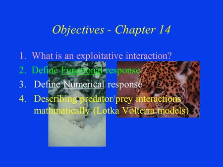 Objectives - Chapter 14 1. What is an exploitative interaction? 2. Define Functional response 3.Define Numerical response 4.Describing predator/prey interactions.