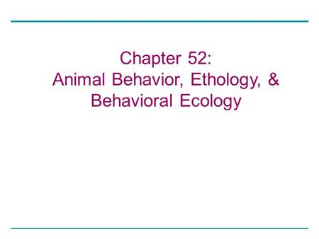 Animal Behavior, Ethology, &