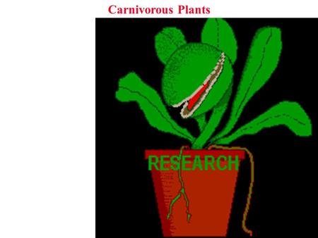Carnivorous Plants. Why be carnivorous? Carnivorous Plants Why be carnivorous? Obtain nutrients in poor environments.