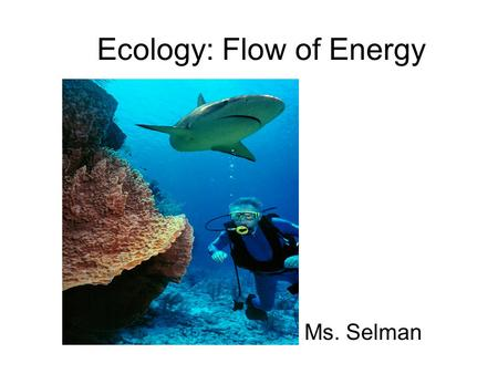 Ecology: Flow of Energy