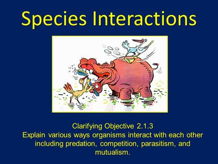 Species Interactions Clarifying Objective 2.1.3 Explain various ways organisms interact with each other including predation, competition, parasitism, and.