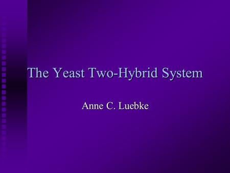 The Yeast Two-Hybrid System Anne C. Luebke. What is the yeast two-hybrid system used for? n Identifies novel protein-protein interactions n Can identify.