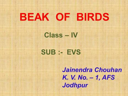 BEAK OF BIRDS Class – IV SUB :- EVS Jainendra Chouhan