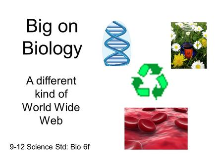 Big on Biology A different kind of World Wide Web 9-12 Science Std: Bio 6f.