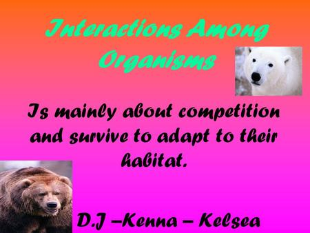 Interactions Among Organisms Is mainly about competition and survive to adapt to their habitat. By D.J –Kenna – Kelsea.