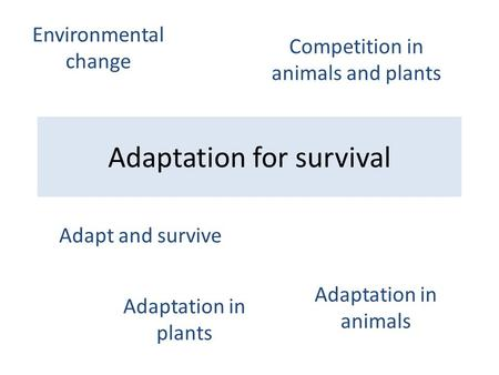 Adaptation for survival Adapt and survive Adaptation in animals Adaptation in plants Competition in animals and plants Environmental change.