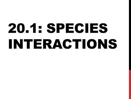 20.1: SPECIES INTERACTIONS. Species (organism) Population Community (interaction of different species) Ecosystem Biosphere.