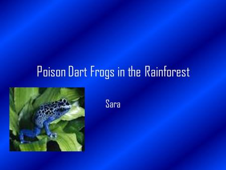 Poison Dart Frogs in the Rainforest Sara. Introduction The rainforests of the world are important to us. In the world rainforests are located in Southern.
