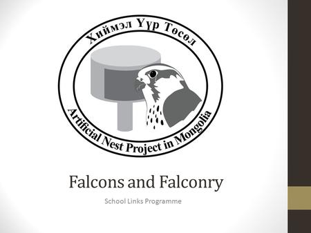 Falcons and Falconry School Links Programme. A falcon is a bird A bird has light, hollow bones No teeth and use their beaks to break up food Feathers.