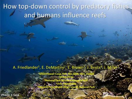 How top-down control by predatory fishes and humans influence reefs How top-down control by predatory fishes and humans influence reefs A. Friedlander.
