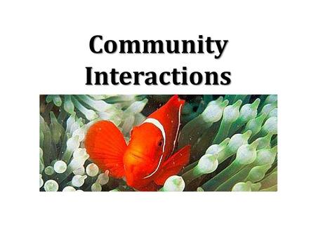 Community Interactions. Community group of different populations living in the same ecosystem. includes all of the living things in an ecosystem.