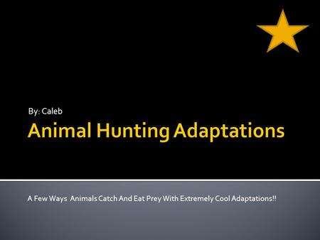 By: Caleb A Few Ways Animals Catch And Eat Prey With Extremely Cool Adaptations!!