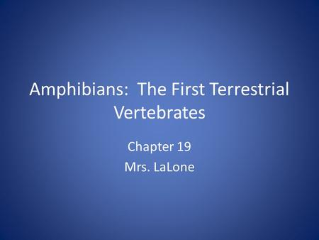 Amphibians: The First Terrestrial Vertebrates Chapter 19 Mrs. LaLone.