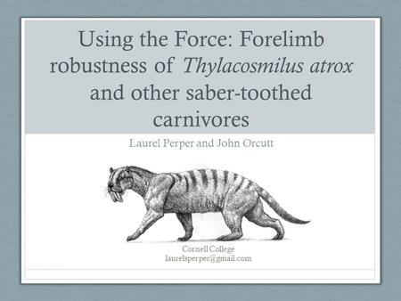 Using the Force: Forelimb robustness of Thylacosmilus atrox and other saber-toothed carnivores Laurel Perper and John Orcutt Cornell College