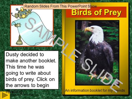 www.ks1resources.co.uk Birds of Prey An information booklet for my friends Dusty decided to make another booklet. This time he was going to write about.