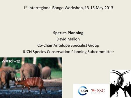 1 st Interregional Bongo Workshop, 13-15 May 2013 Species Planning David Mallon Co-Chair Antelope Specialist Group IUCN Species Conservation Planning Subcommittee.