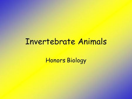 Invertebrate Animals Honors Biology. Objectives Describe characteristics common to invertebrate animals Describe the characteristics of major animal invertebrate.