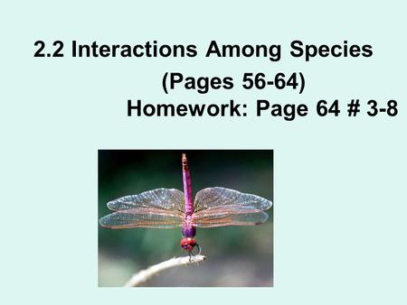 2.2 Interactions Among Species (Pages 56-64) Homework: Page 64 # 3-8.