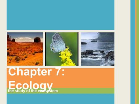Chapter 7: Ecology the study of the ecosystem.