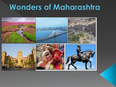  Maharashtra a state in the western region of India.  It is the second most populous state after Uttar Pradesh and third largest state by area in India.
