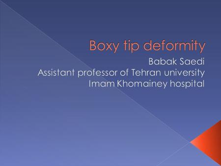  The boxy tip is defined as a broad, rectangular tip as seen on basal view.