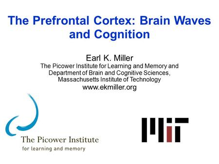 The Prefrontal Cortex: Brain Waves and Cognition Earl K. Miller The Picower Institute for Learning and Memory and Department of Brain and Cognitive Sciences,
