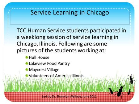 Service Learning in Chicago TCC Human Service students participated in a weeklong session of service learning in Chicago, Illinois. Following are some.