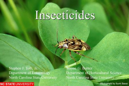 Insecticides Photograph by Scott Bauer Stephen J. Toth, Jr.Wayne G. Buhler Department of EntomologyDepartment of Horticultural ScienceNorth Carolina State.