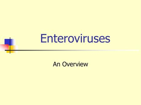Enteroviruses An Overview.