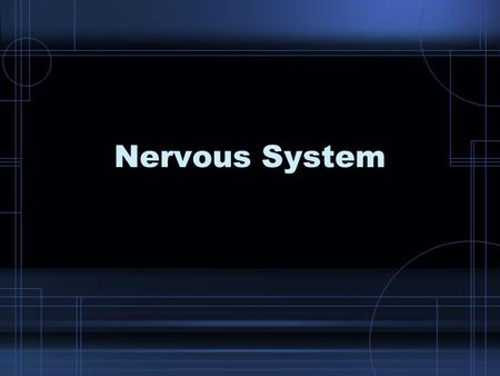 Nervous System. The Neuron Also called the nerve cell It is the basic structural unit of the nervous system.