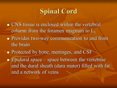 Spinal Cord CNS tissue is enclosed within the vertebral column from the foramen magnum to L1 Provides two-way communication to and from the brain Protected.