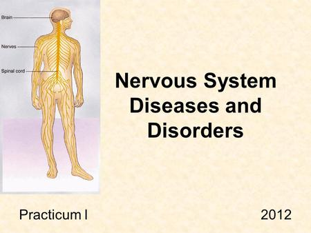 Nervous System Diseases and Disorders Practicum I 2012.