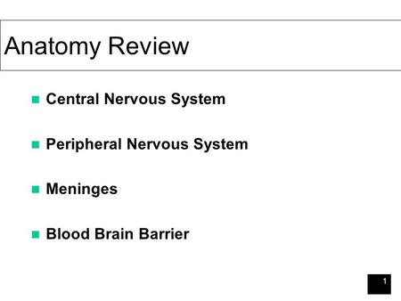 1 Anatomy Review Central Nervous System Peripheral Nervous System Meninges Blood Brain Barrier.