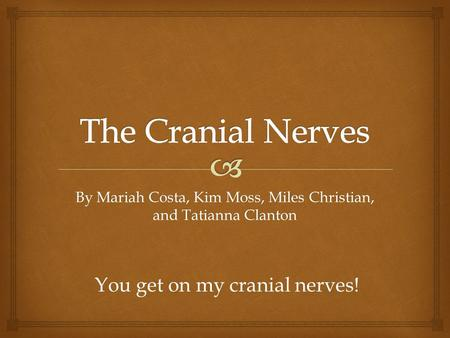 By Mariah Costa, Kim Moss, Miles Christian, and Tatianna Clanton You get on my cranial nerves!