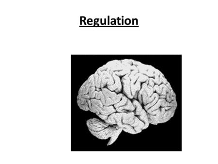 Regulation Chapter 9- Regulation Regulation: –T–The coordination and control of the life activities. –T–The internal environment must remain stable 