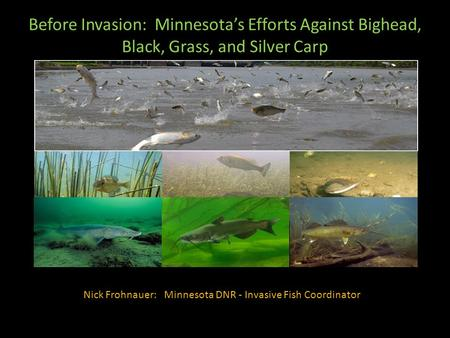 Nick Frohnauer: Minnesota DNR - Invasive Fish Coordinator Before Invasion: Minnesota's Efforts Against Bighead, Black, Grass, and Silver Carp.