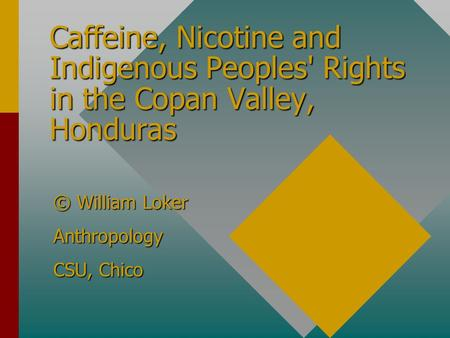 Caffeine, Nicotine and Indigenous Peoples' Rights in the Copan Valley, Honduras © William Loker Anthropology CSU, Chico.