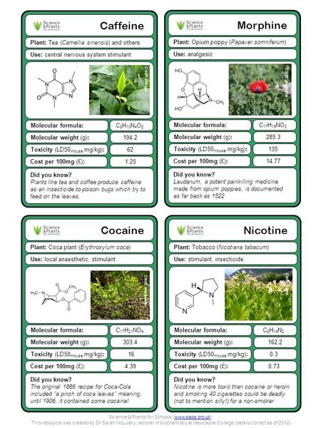 Nicotine Plant: Tobacco (Nicotiana tabacum) Did you know? Nicotine is more toxic than cocaine or heroin and smoking 40 cigarettes could be deadly (not.
