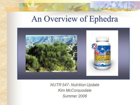 NUTR 547- Nutrition Update Kim McCorquodale Summer 2006 An Overview of Ephedra.