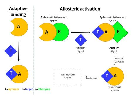 "A A A A RR T T T T Adaptive binding Allosteric activation A=Aptamer T=target R=Ribozyme Apta-switch/beacon ""OFF"" Apta-switch/beacon ""ON"" ""INPUT"" Signal."