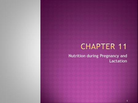 Nutrition during Pregnancy and Lactation 1.  The mother's food habits and nutritional status before conception, as well as during pregnancy, influence.