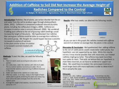 A molecule of caffeine. Source: answers.com, 2011 Addition of Caffeine to Soil Did Not Increase the Average Height of Radishes Compared to the Control.