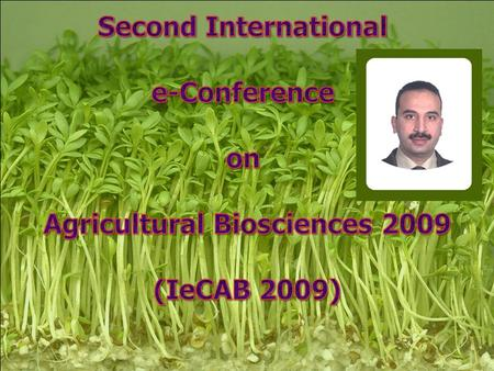 2nd IeCAB symposium June 1-15 2009.. 2 Mohamed M. Ibrahim 1* and Sameera O. Bafeel 2 1 Science Department ( Biology section), Teacher's College, King.