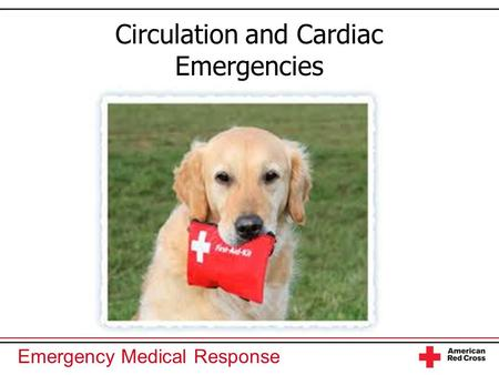Emergency Medical Response Circulation and Cardiac Emergencies.