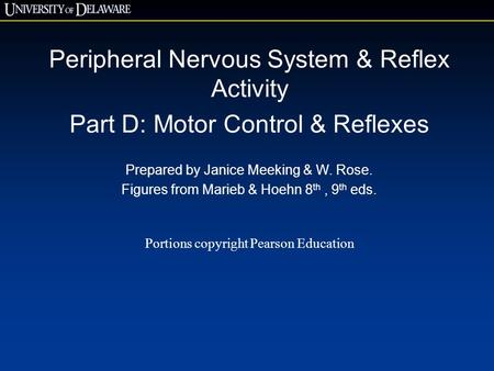 Peripheral Nervous System & Reflex Activity Part D: Motor Control & Reflexes Prepared by Janice Meeking & W. Rose. Figures from Marieb & Hoehn 8 th, 9.