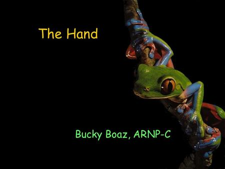 The Hand Bucky Boaz, ARNP-C. Examination of the Upper Extremity A detailed history should include: Patient's age Handedness Occupation Hobbies Chief complaint.