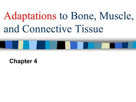 Adaptations to Bone, Muscle, and Connective Tissue Chapter 4.